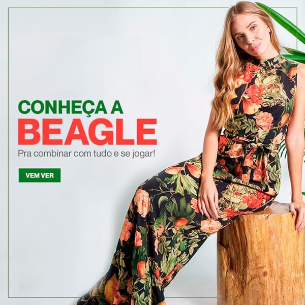 Lançamento Beagle
